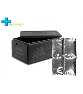Kit froid - 1 Conteneur 42L + 1 plaque froide 2KG
