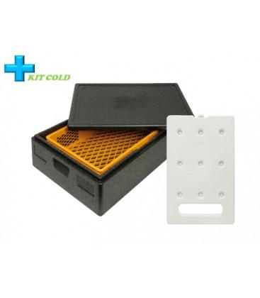 Kit froid - 1 Conteneur 53L + 1 plaque froide 4KG