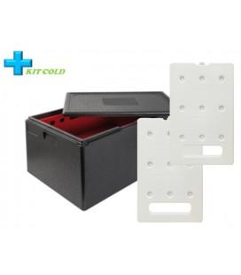 Kit froid - 1 Conteneur 105L + 2 plaques froides 4KG