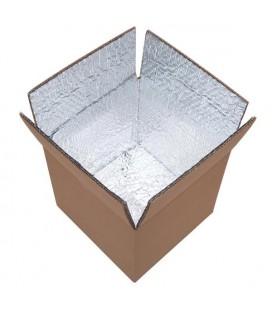 Lot de cartons isothermes 25 litres